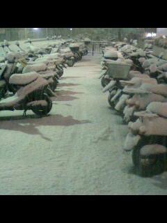 鷺沼 積雪 大雪かな