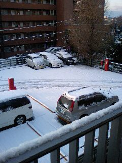 鷺沼 今朝の残雪