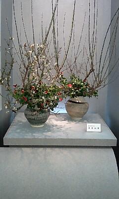 京都駅の生け花展