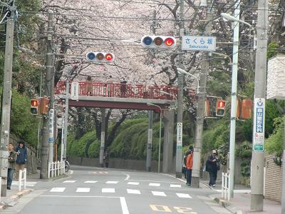 Sakurasaka010403