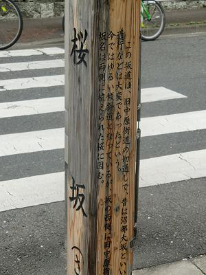 Sakurasaka010403_2_2