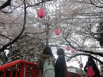 Sakurasaka010403_3
