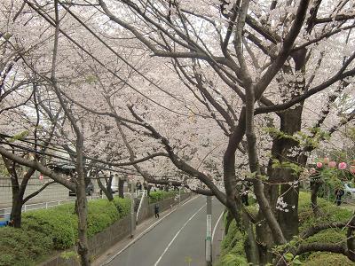 Sakurasaka010403_4