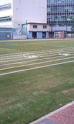神南小学校 芝の校庭