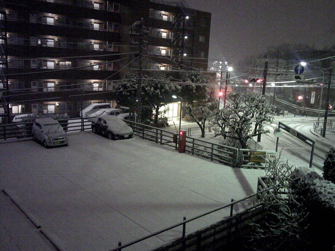 積もりました雪